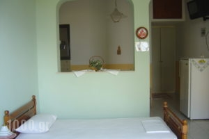 Georgiou Rooms & Apartments_best deals_Apartment_Central Greece_Evia_Rovies