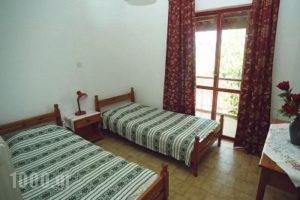 Villa Rosa Apartments_holidays_in_Villa_Crete_Chania_Stavros