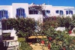 Dimitra Studios in Paros Rest Areas, Paros, Cyclades Islands