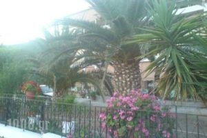 Aggelopouloi Studios_lowest prices_in_Apartment_Central Greece_Evia_Edipsos