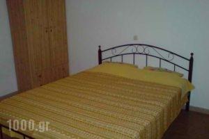 Aggelopouloi Studios_best deals_Apartment_Central Greece_Evia_Edipsos
