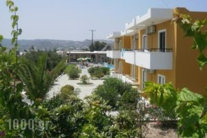 Manolis Studios_best deals_Hotel_Dodekanessos Islands_Kos_Kos Rest Areas