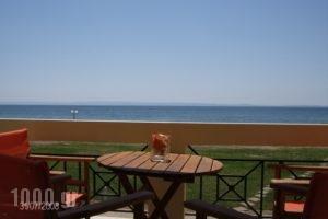 Monopetro_holidays_in_Apartment_Macedonia_Halkidiki_Poligyros