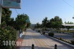 Iliovasilema – Sunset Apartments in Pefki, Evia, Central Greece