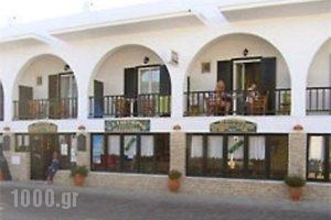 Hotel Ivi_accommodation_in_Hotel_Cyclades Islands_Antiparos_Antiparos Chora