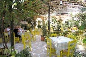 Hotel Ivi_best deals_Hotel_Cyclades Islands_Antiparos_Antiparos Chora