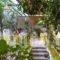 Hotel Ivi_lowest prices_in_Hotel_Cyclades Islands_Antiparos_Antiparos Chora