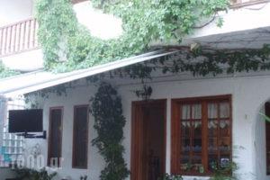 Sweet Home_travel_packages_in_Macedonia_Halkidiki_Neos Marmaras