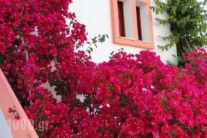 Villa Elizea_best prices_in_Villa_Crete_Chania_Agia Marina
