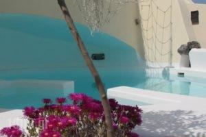 Lotza Studios_accommodation_in_Hotel_Cyclades Islands_Sandorini_Oia