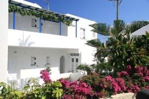Loukia Apartments & Studios_lowest prices_in_Apartment_Cyclades Islands_Paros_Paros Chora