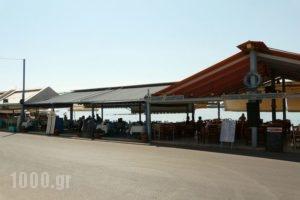 Areti_travel_packages_in_Piraeus Islands - Trizonia_Aigina_Agia Marina