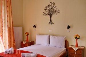 VasilikiBlue_accommodation_in_Apartment_Ionian Islands_Lefkada_Vasiliki