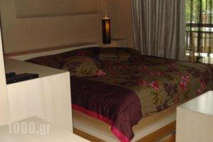 Hotel Koziakas_lowest prices_in_Hotel_Thessaly_Trikala_Trikala City