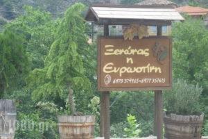 Evrostini Hostel_lowest prices_in_Room_Peloponesse_Korinthia_Evrostina