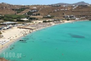 Penelope Village_best prices_in_Hotel_Cyclades Islands_Mykonos_Elia
