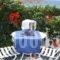 Penelope Village_holidays_in_Hotel_Cyclades Islands_Mykonos_Elia