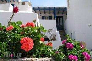 Popy_best prices_in_Hotel_Piraeus Islands - Trizonia_Kithira_Kithira Chora
