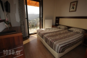 Evanthia's Traditional Mansion_travel_packages_in_Central Greece_Fokida_Delfi