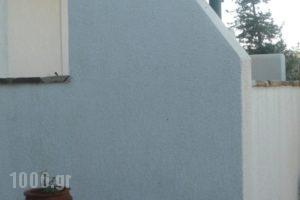 Glyfada View Studios_holidays_in_Hotel_Cyclades Islands_Naxos_Naxos chora