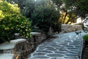 Glyfada View Studios_best deals_Hotel_Cyclades Islands_Naxos_Naxos chora
