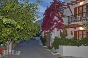 Marisa Rooms_accommodation_in_Room_Cyclades Islands_Paros_Paros Chora