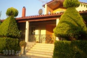 Villa Rodon_holidays_in_Villa_Peloponesse_Argolida_Drepano