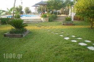 Villa Rodon_best prices_in_Villa_Peloponesse_Argolida_Drepano