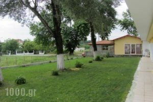 Pieria Studios_holidays_in_Hotel_Macedonia_Pieria_Dion