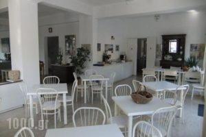 Apollon_best deals_Hotel_Aegean Islands_Samos_Pythagorio