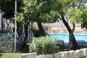 Apollon_accommodation_in_Hotel_Aegean Islands_Samos_Pythagorio