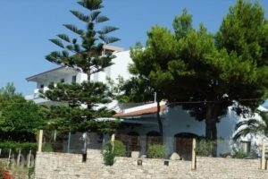 Apollon_holidays_in_Hotel_Aegean Islands_Samos_Pythagorio