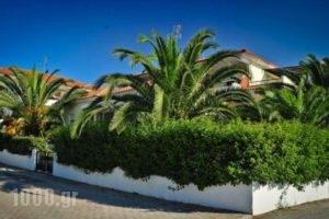 Kapsohora Inn_lowest prices_in_Hotel_Macedonia_Halkidiki_Haniotis - Chaniotis