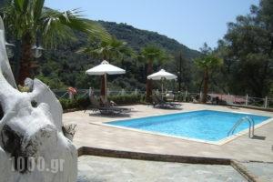 Golden Sun_best prices_in_Apartment_Epirus_Preveza_Parga