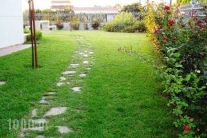 Villa Anastasia_lowest prices_in_Villa_Central Greece_Evia_Pefki