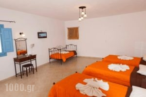Ios Memories_holidays_in_Hotel_Cyclades Islands_Ios_Ios Chora