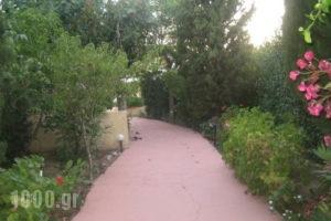 Villa Sofia_best deals_Villa_Dodekanessos Islands_Rhodes_Ialysos