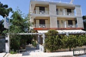 Miami Hotel_best prices_in_Hotel_Piraeus islands - Trizonia_Aigina_Marathonas