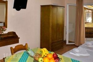 Porto Nirikos_holidays_in_Hotel_Ionian Islands_Lefkada_Lefkada's t Areas