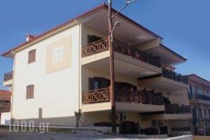 Alkyonis Apartments_lowest prices_in_Apartment_Macedonia_Halkidiki_Ierissos