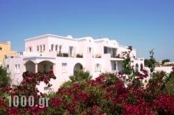 The Bliss Estate in Sandorini Rest Areas, Sandorini, Cyclades Islands
