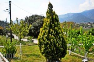 Xenonas Bizani_accommodation_in_Apartment_Epirus_Ioannina_Bizani