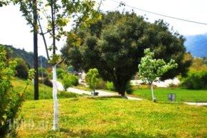 Xenonas Bizani_lowest prices_in_Apartment_Epirus_Ioannina_Bizani