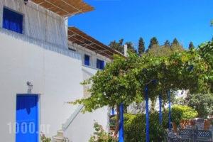 Polytimi Studios_holidays_in_Apartment_Cyclades Islands_Amorgos_Amorgos Chora