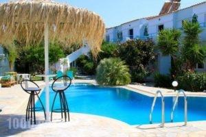 Seashell Apartments_accommodation_in_Apartment_Crete_Chania_Platanias