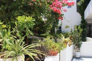 Loukia Apartments & Studios_best deals_Apartment_Cyclades Islands_Paros_Paros Chora