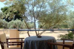 Chromata Beach Apartments_best prices_in_Apartment_Central Greece_Evia_Rovies