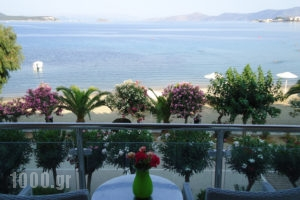 Delfini_lowest prices_in_Hotel_Central Greece_Evia_Karystos