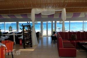 Sacallis Inn Beach Hotel_best deals_Hotel_Dodekanessos Islands_Kos_Kos Rest Areas