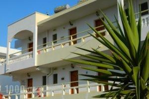 Roseberry Studios_best deals_Hotel_Dodekanessos Islands_Rhodes_Faliraki